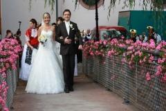 Hochzeit HH 15