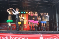 2010-Narrenmarkt2-20100207