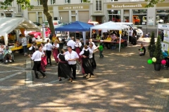 2011-06-05 - Oststadtbürgerfest (45)